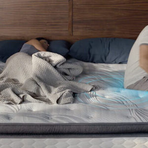 Serta Perfect Sleep Mattress