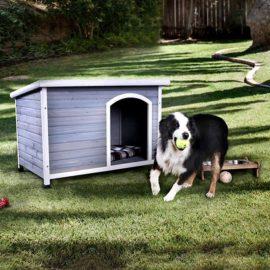 CANDO DOG HOUSE