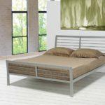 Cooper Contemporary Silver Metal Bed