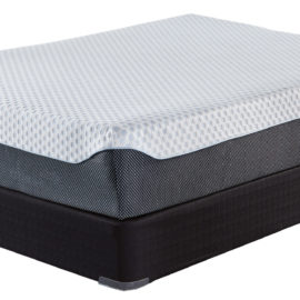 12 Inch Elite Memory Foam MIB